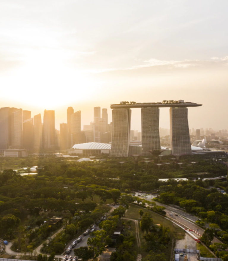 """APIdays Singapore: """"APIs, Ecosystems, and Finance-as-a-Service"""""""